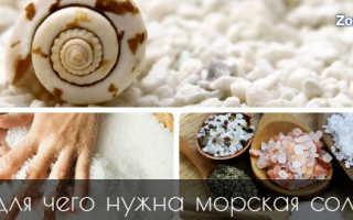 Пищевая морская соль полезные свойства