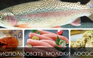 Чем полезна молока лососевых рыб