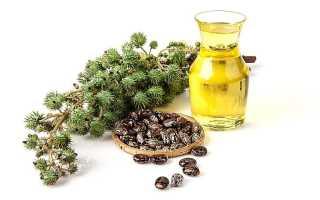 Чем полезен касторовое масло