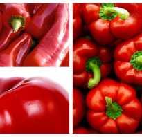 Полезные свойства красного перца болгарского