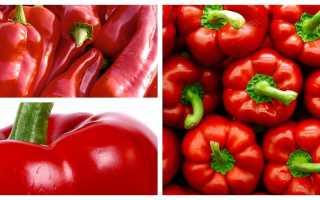 Чем полезен болгарский перец для организма женщины