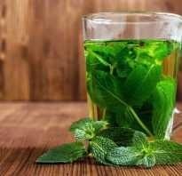 Чай из мяты чем полезен для женщин