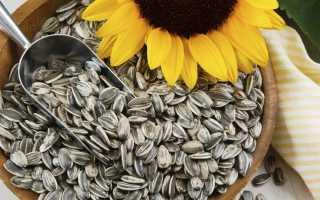 Чем полезны сырые семечки
