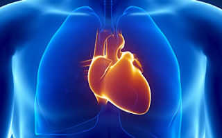 Полезное питание для сердца
