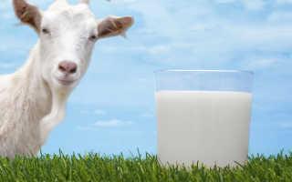 Козье молоко польза вред