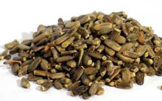Семя расторопши полезные свойства