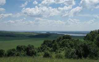 Полезные ископаемые в восточно европейской равнине