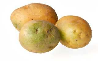 Полезна ли сырая картошка