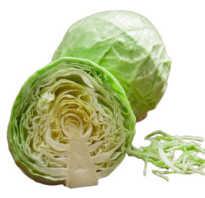 Чем полезна капуста белокочанная для организма