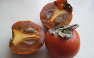 Полезные свойства королька