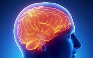 Полезная для мозга пища