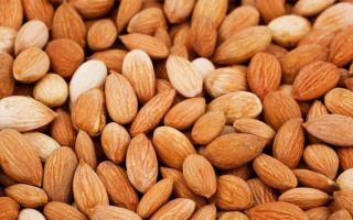 Семечки абрикоса польза и вред