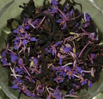 Полезные свойства чая копорского