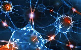 Продукты полезные для нервной системы женщин