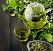 Чай из мелиссы полезные свойства
