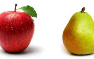 Что полезнее груши или яблоки