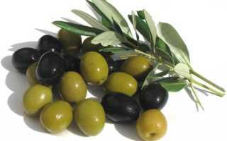 Польза маслин черных