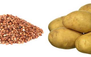 Картошка или гречка что полезнее