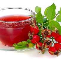 Чем полезен чай с шиповником для женщин