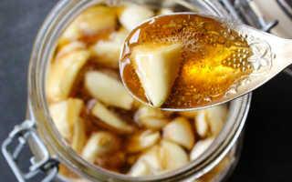 Чем полезен чеснок с медом