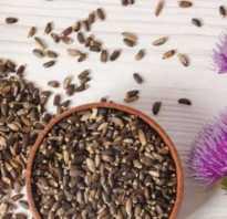 Расторопша полезные свойства для печени отзывы