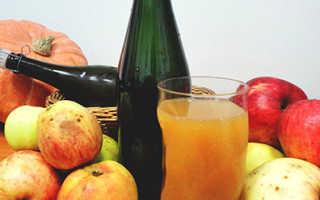 Полезен ли яблочный сидр