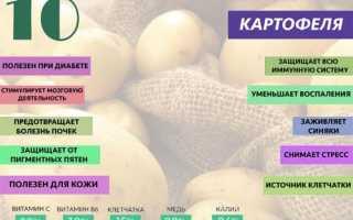 Картошка полезные свойства и противопоказания