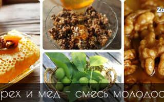 Чем полезны грецкие орехи с медом