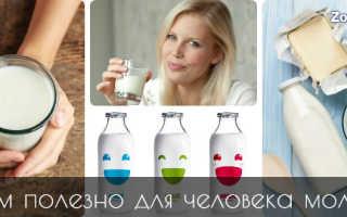 Полезно ли пожилым людям молоко