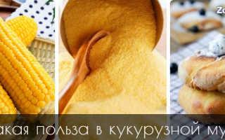 Кукурузный хлеб полезен ли