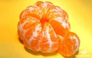 Полезные свойства мандарина для организма