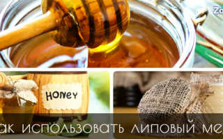 Чем полезен липовый мед для мужчин