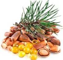 Ядро кедрового ореха полезные свойства