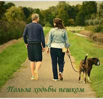 Пешком ходить полезно для здоровья
