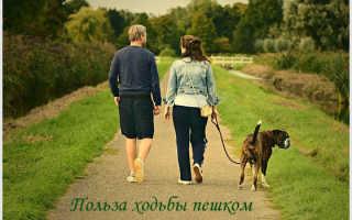 Ходить полезно