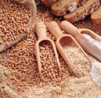 Ржаные или пшеничные отруби полезнее