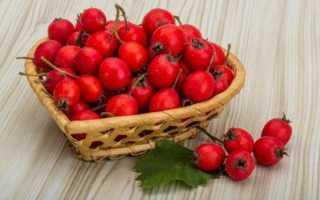 Чем полезны ягоды боярышника