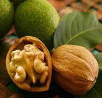 От чего полезен грецкий орех