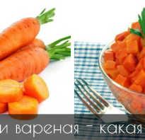 Полезна ли морковь в сыром виде