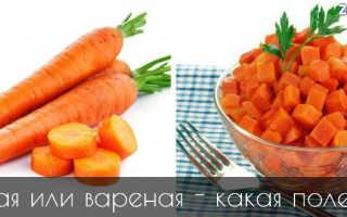 Полезна ли сырая морковь