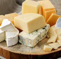 Полезен или вреден сыр