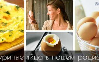 Яйца всмятку или вкрутую что полезнее