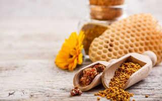 Перга пчелиная полезные свойства применение отзывы