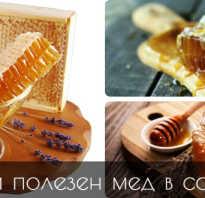 Соты с медом чем полезны