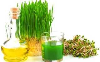 Чем полезно масло зародышей пшеницы