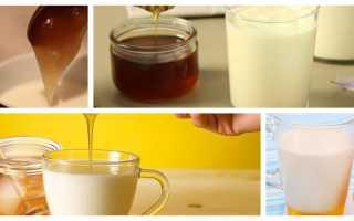 Полезно ли на ночь молоко с медом