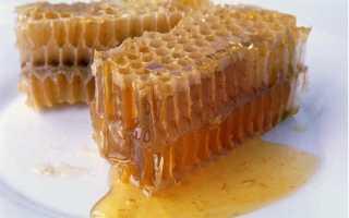 Полезны ли соты пчелиные
