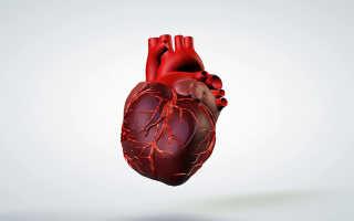 Полезные продукты для сердца и вредные