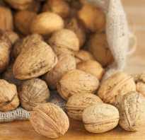 Чем полезна скорлупа грецких орехов