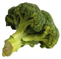 Чем полезна капуста брокколи для женщин